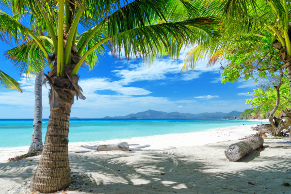 Miami to Montego Bay, Jamaica for only $219 roundtrip