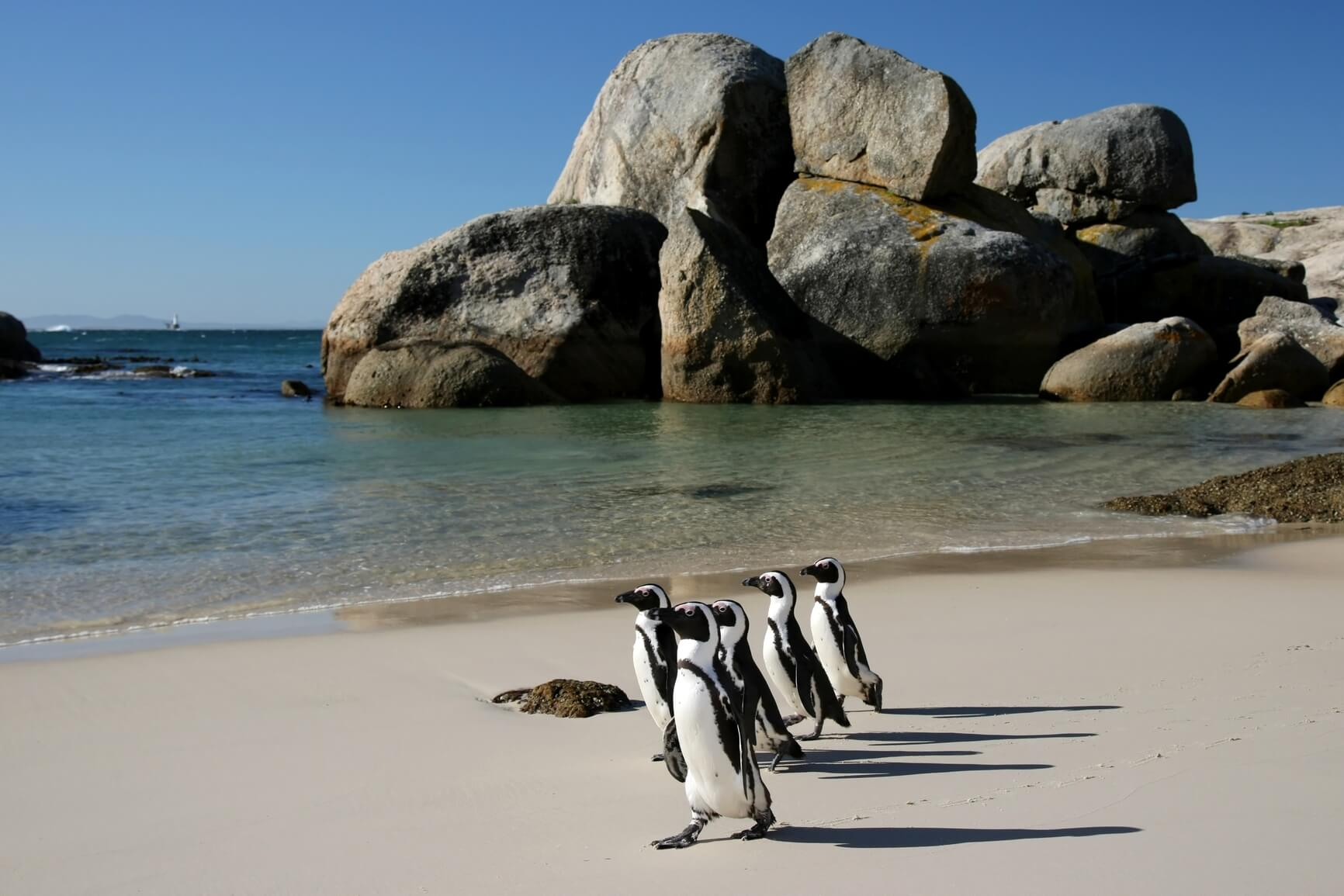 HOT!! Los Angeles to Cape Town, South Africa for only $575 roundtrip