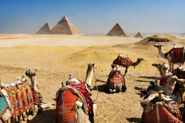 New York to Cairo, Egypt for only $650 roundtrip