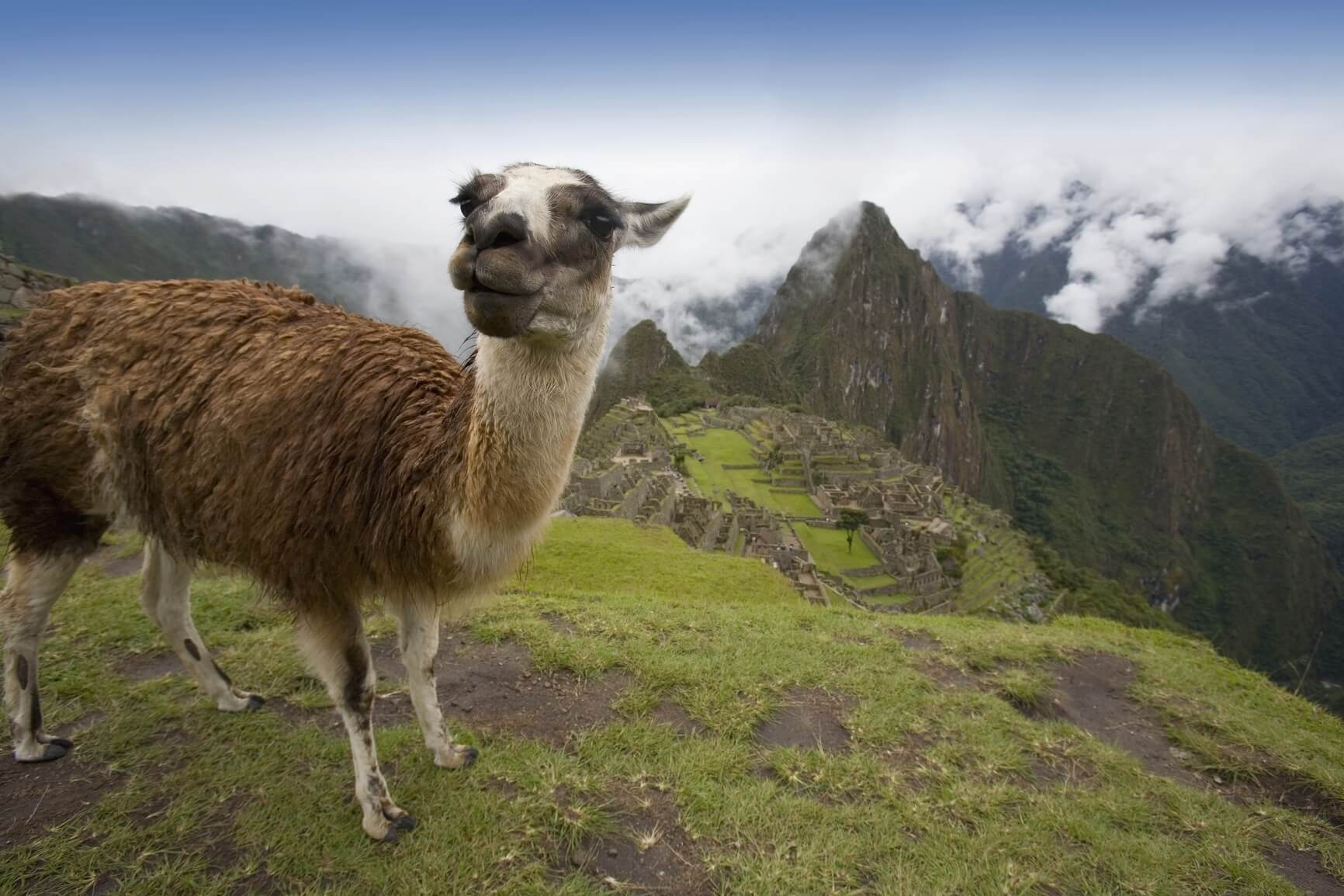 HOT!! New York to Lima, Peru for only $230 roundtrip (Sep-Jan dates)