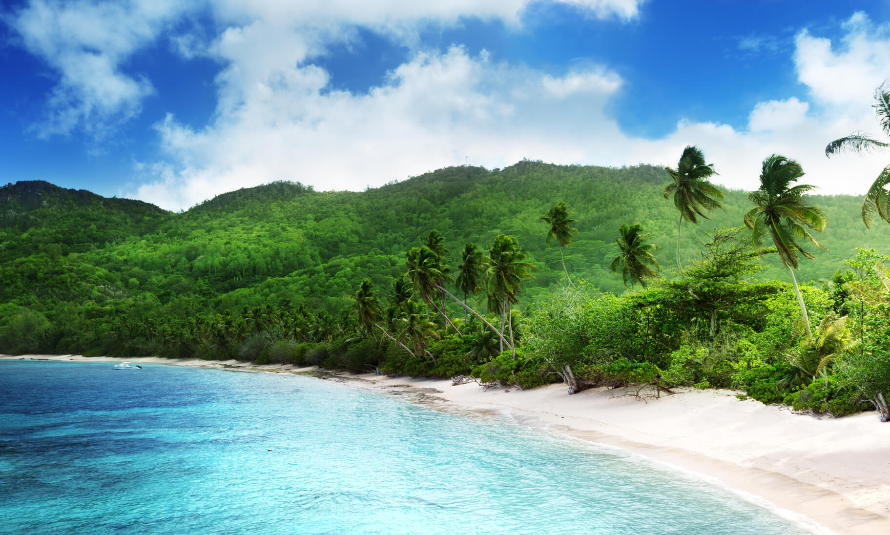 XMAS & NEW YEAR: Izmir, Turkey to the Seychelles for only €376 roundtrip