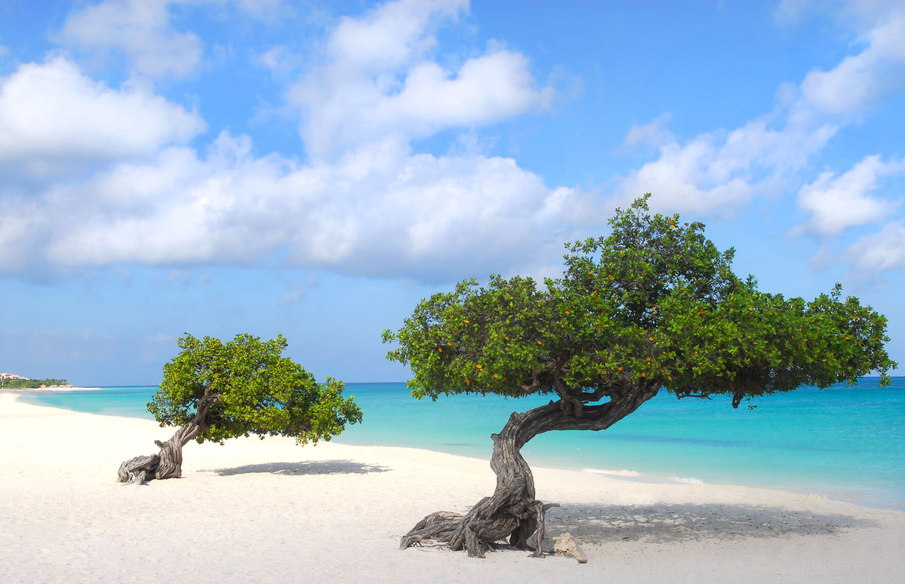 Fort Lauderdale to Aruba for only $77 one-way (or $205 roundtrip)