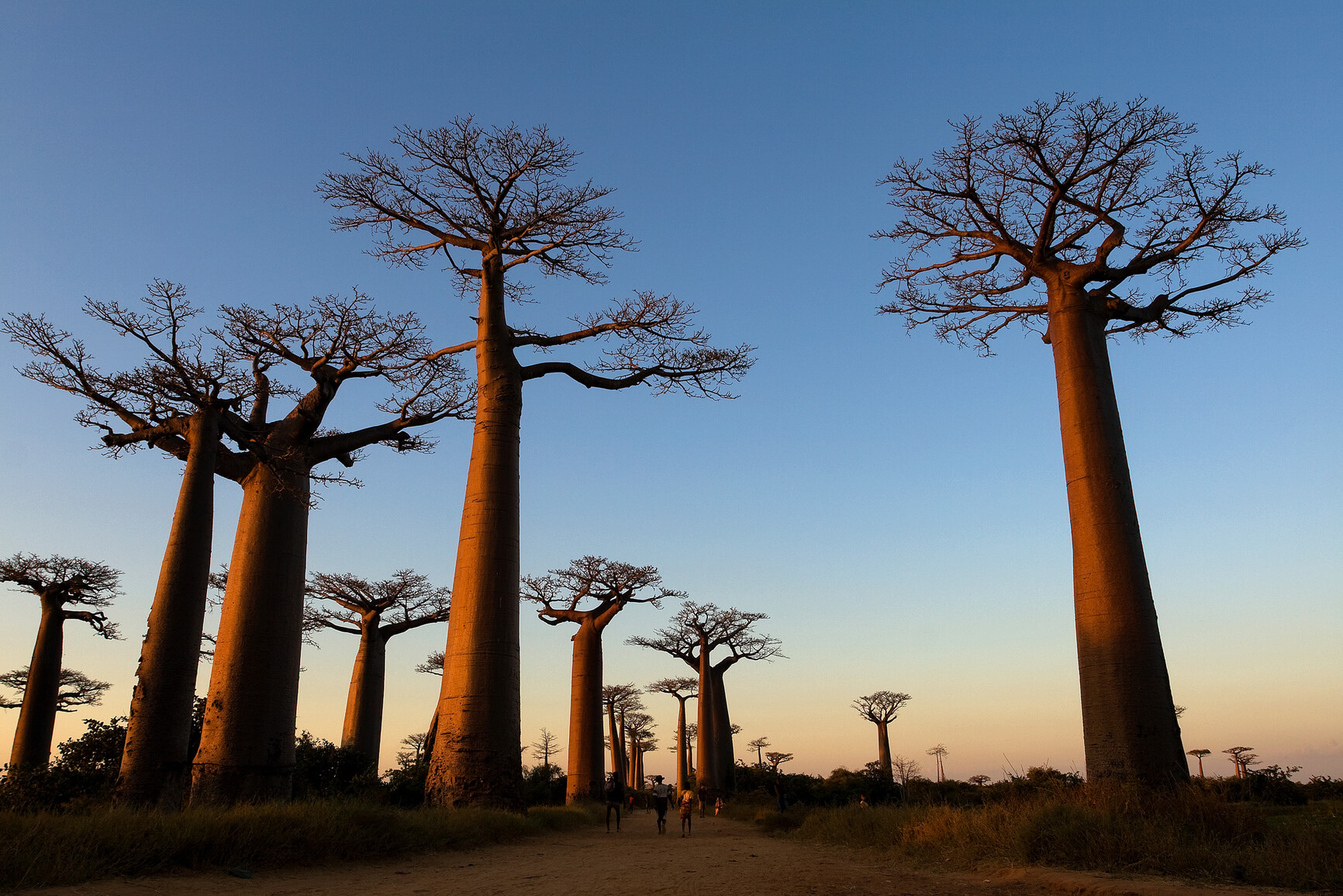 London, UK to Madagascar for only £477 roundtrip (Sep-Oct dates)