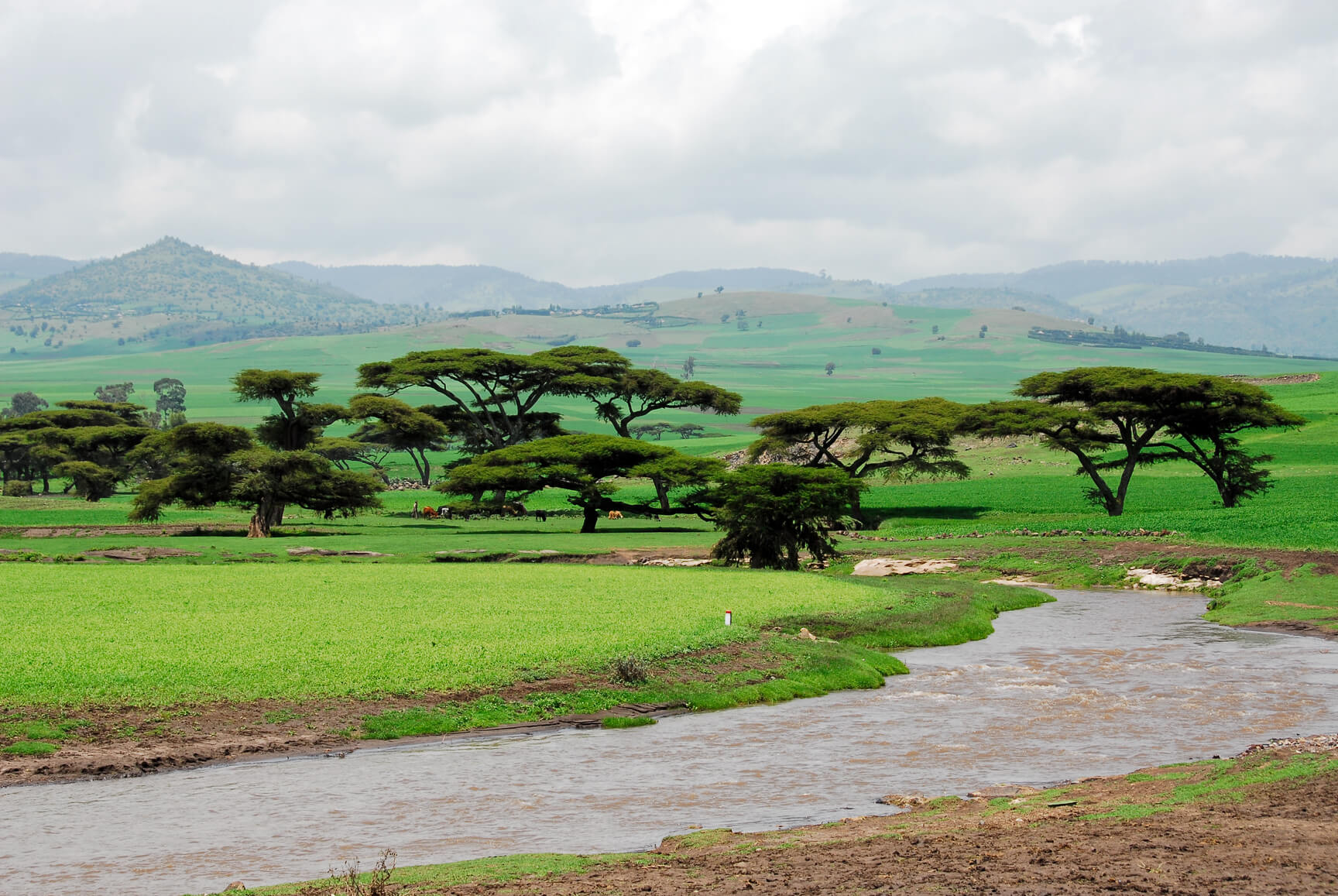 Non-stop from Athens, Greece to Addis Ababa, Ethiopia for only €342 roundtrip (Aug-Nov dates)
