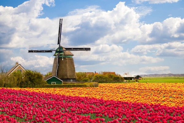 SUMMER: Non-stop from Houston, Texas to Amsterdam, Netherlands for only $514 roundtrip