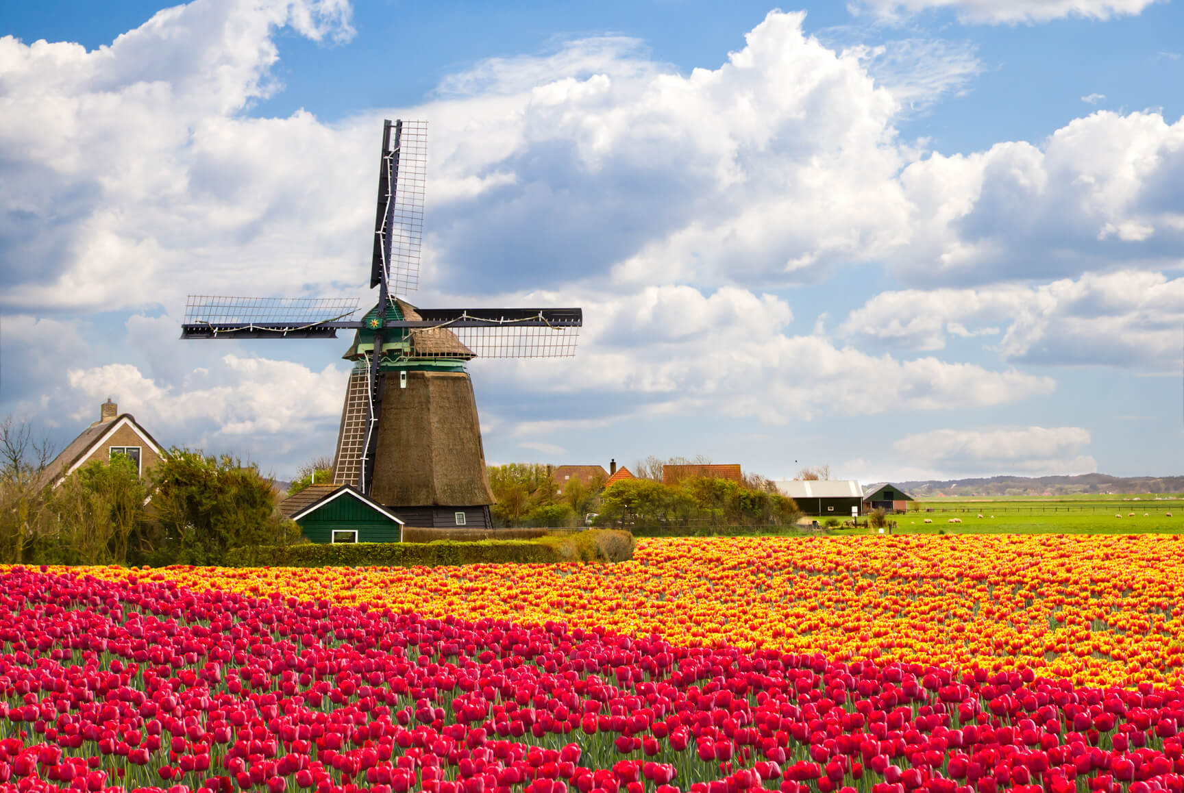 Accra, Ghana to Amsterdam, Netherlands for only $454 USD roundtrip