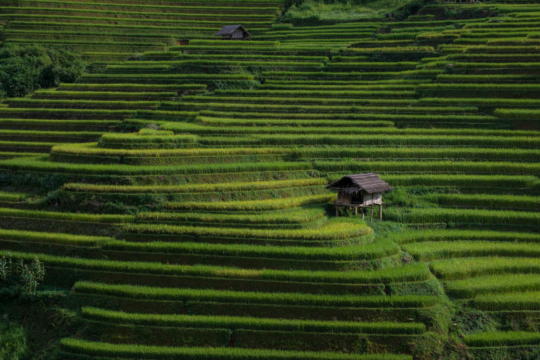 Warsaw, Poland to Vietnam for only €116 one-way