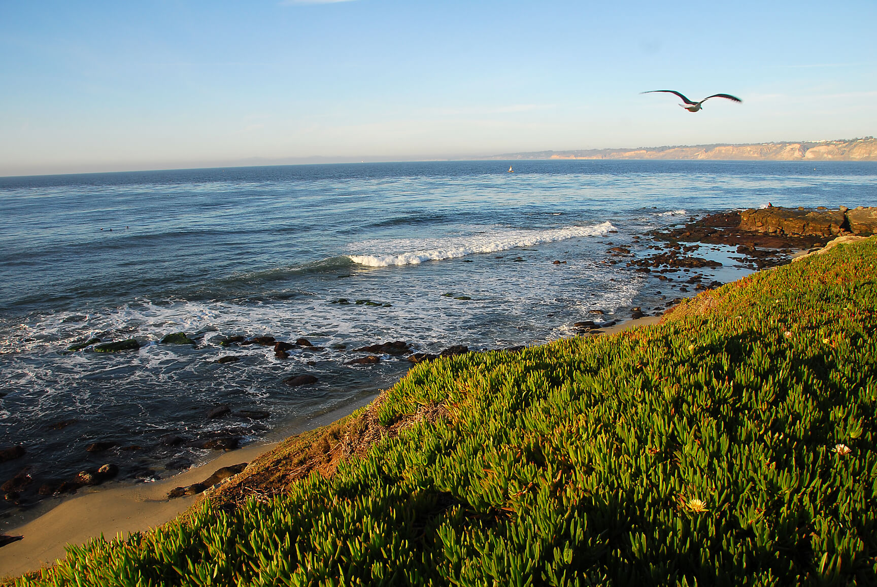 Flight deals from Chicago to San Diego   Secret Flying