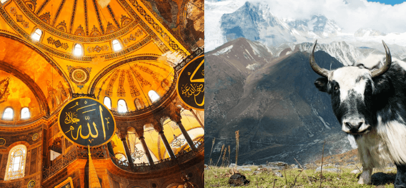 2 IN 1 TRIP: London, UK to Turkey & Nepal for only £291 roundtrip
