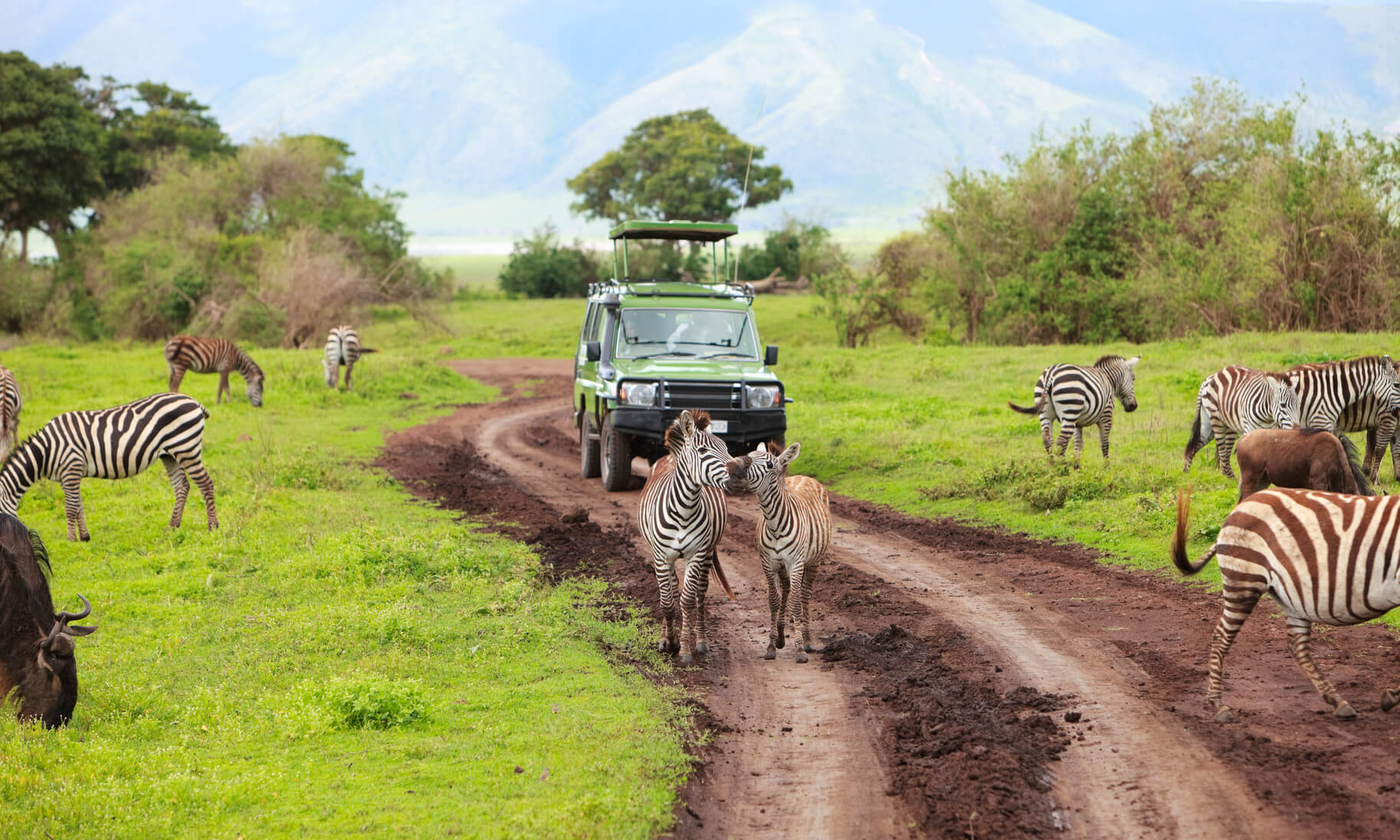 Dallas, Texas to Nairobi, Kenya for only $606 roundtrip (Jan-May dates)