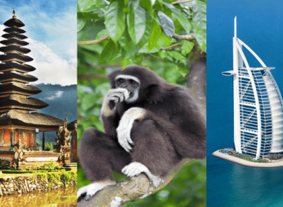 3 IN 1 TRIP: London, UK to Bali, Brunei & Dubai for only £506 roundtrip