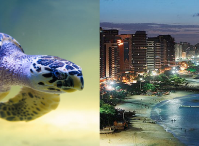2 IN 1 TRIP: Miami to Recife & Fortaleza, Brazil for only $342 roundtrip