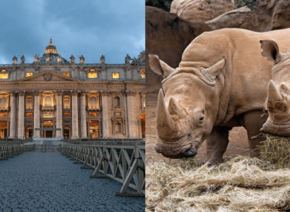 2 IN 1 TRIP: London, UK to Rome, Italy & Johannesburg, South Africa for only £314 roundtrip